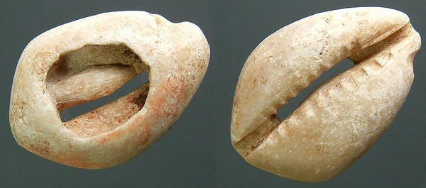 Ancient Stone carved cowrie - Chinese