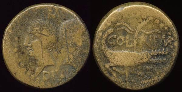 Augustus & Agrippa Nemausus Crocodile